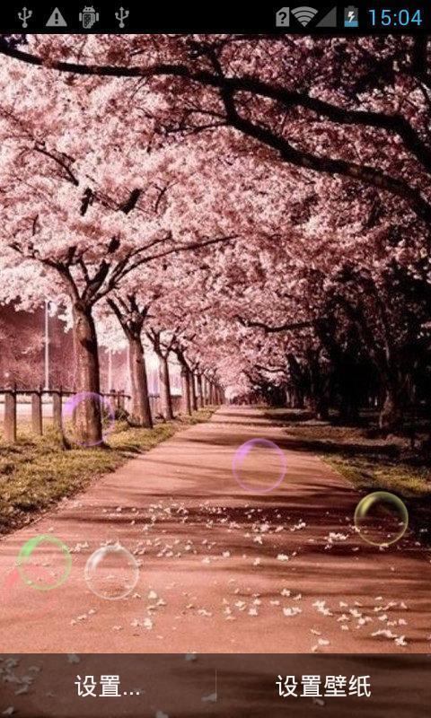 浪漫樱花树动态壁纸_360手机助手