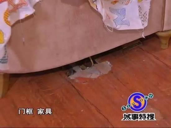 吓人!广州一豪宅被白蚁侵袭 女主人不敢回家 - 天地人 - 天地人和