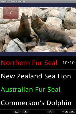 海洋哺乳动物的名称_360手机助手