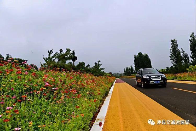 涉县千里旅游通道上的8乡镇领种花籽,静待花开!