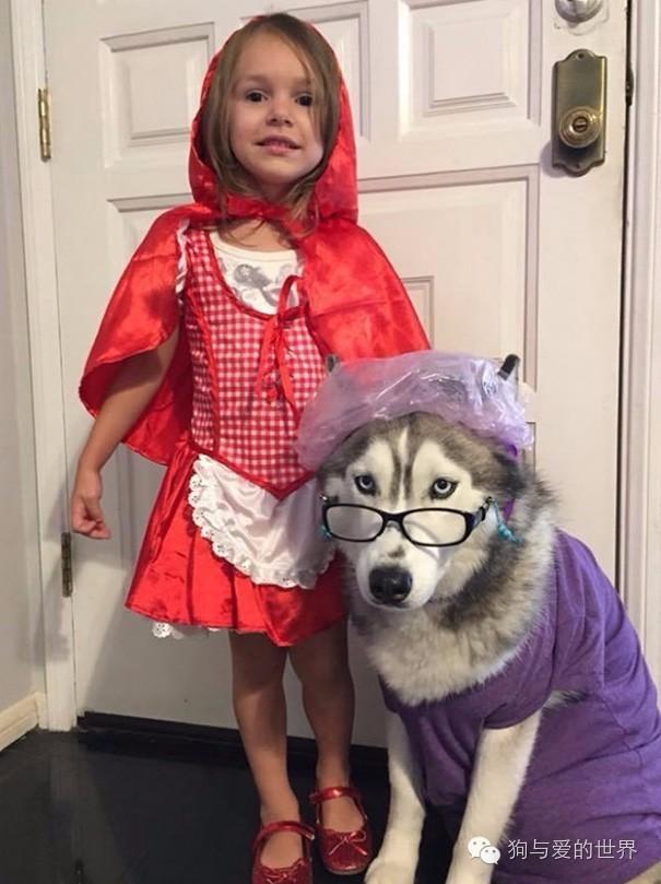 """""""喂,你这小红帽是要去哪家祸祸老奶奶啊?"""""""